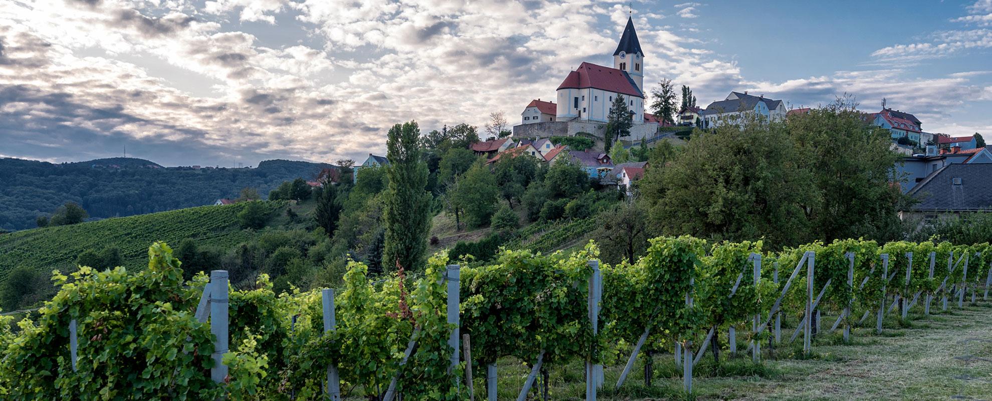 Wein in St. Anna
