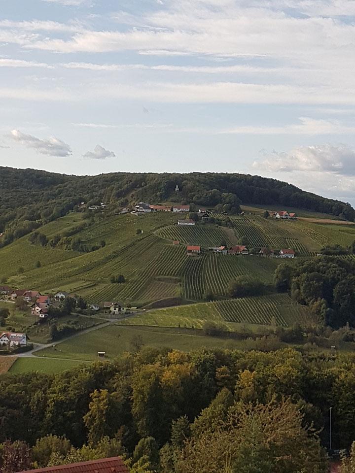 Weinhof Pfeifer
